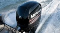 MERCURY F150 L EFI